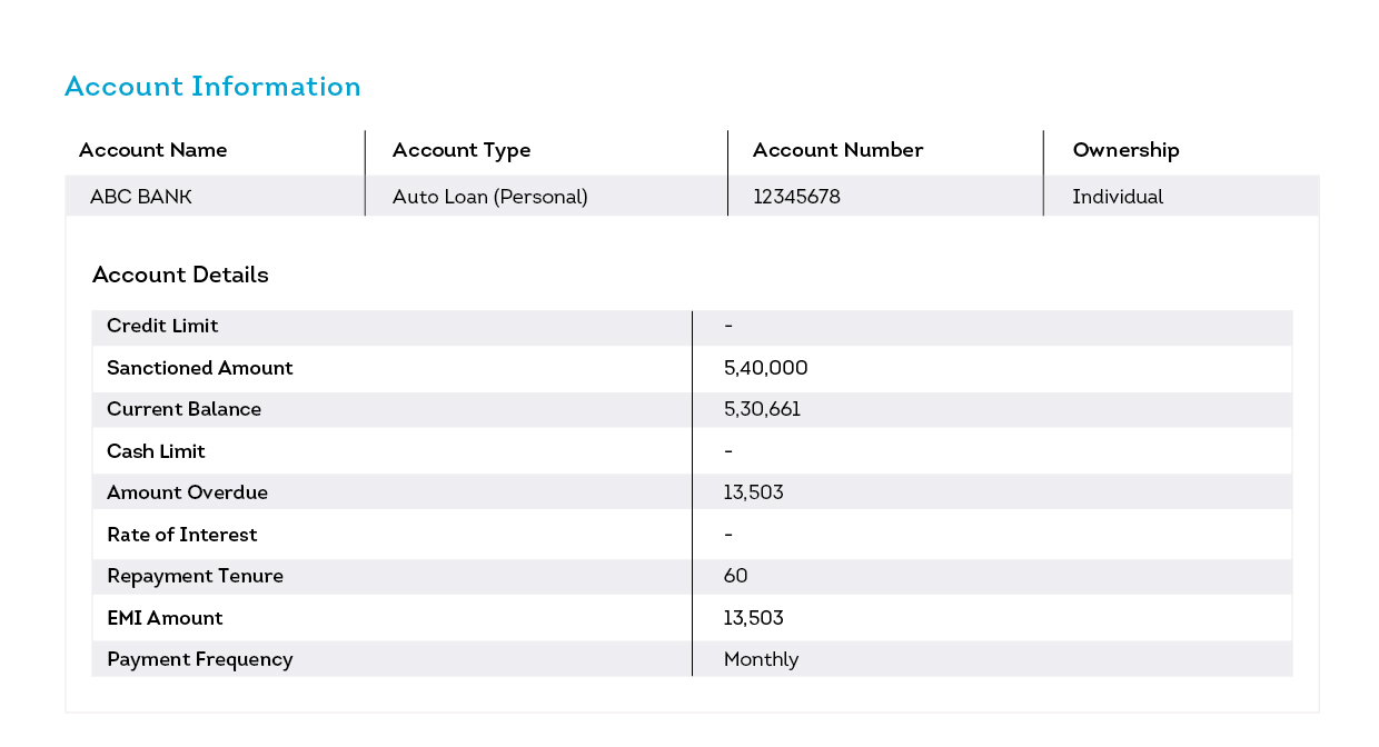 account information displaying tabled data